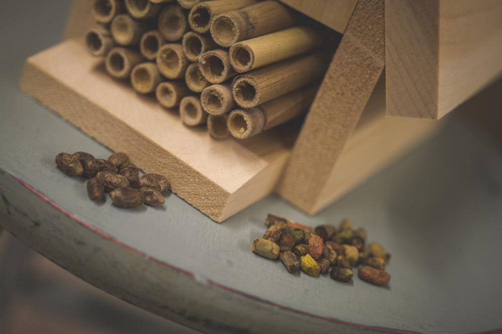 Bee Hatching Kit for Mason Bees and Leafcutter Bees